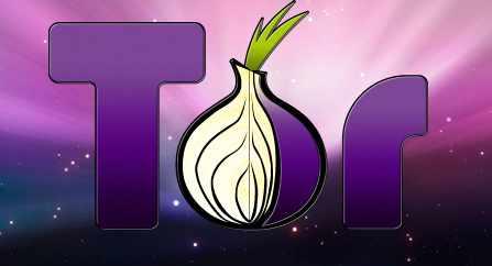 tor-browser-bundle-logo